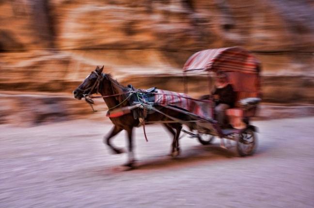 petra-horse-cart-by-sherry-ott